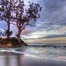 Two Tree Point, Adventure Bay, Bruny Island, Tasmania, Australia by PC1134