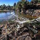 Haruru Falls by doug hunwick