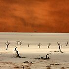 Namibia dead trees,Sossusvlei by Ty Cooper