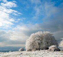 Heavy Frost by Anne Gilbert