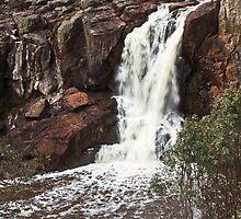 Nigretta Falls #4 by Roger Neal