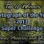 NPAD Banner - Photo of Year Top 10 by Celeste Mookherjee