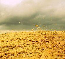 Stormy Skies  by Trish Threlfall