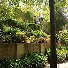 summer gardens in Melbourne by jayview