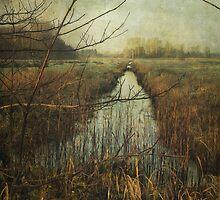 Towards Claxton Marshes by Sarah Jarrett