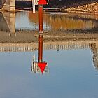 Reflections in the Napa River by Buckwhite
