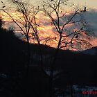 A beautiful sun set by mmoeus