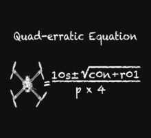 Quad-erratic Equation by bungeecow