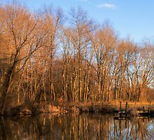 forgotten country pond by photosbyphil62