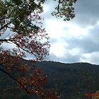 Fall Sky by mmoeus