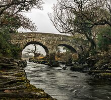Old Weir Bridge,Killarney National Park,Ireland by youngoggo