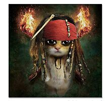 "CATS IN HATS ""Jack the Sparrow Hunter"" by Patty McNally"