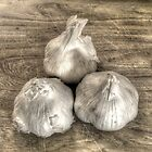 Three Bulbs of Garlic by Geoffrey Coelho