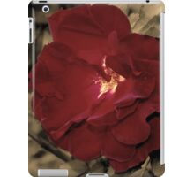 Color of Love iPad Case/Skin