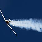 T6 Texan by Peter Whitworth