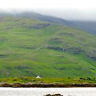 Isolated Life on the Isle of Mull by Claudia Dingle