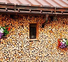 Neat Wood Stack with Flowers by jojobob