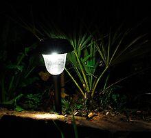 Garden Solar Light in the Dark by jojobob