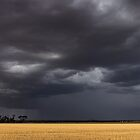 Walgoolan Thunderstorm by Matt Fricker Photography