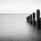 Groynes by Fern Blacker