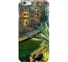 Italy. Cinque Terre - Canal side close up iPhone Case/Skin
