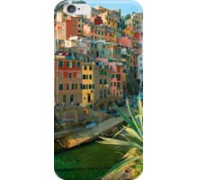 Italy. Cinque Terre - Canal side iPhone Case/Skin