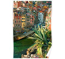 Italy. Cinque Terre - Canal side close up Poster