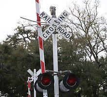 """Railroad Crossing"" by BlackDove1128"