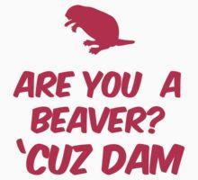 Are you a Beaver? Cuz Dam Kids Clothes
