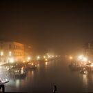 Grand Canal, Venice by Jai Honeybrook