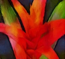thinking of bromeliad by James E. Thomas