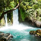 Hermon Stream Nature reserve (Banias) Golan Heights Israel by PhotoStock-Isra