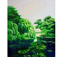 Green swamp Photographic Print
