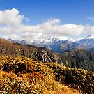 India, Sikkim landscape by PhotoStock-Isra