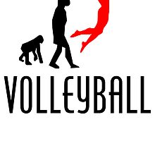 Volleyball Evolution (Red) by kwg2200