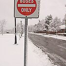 Buses only by rumimume