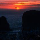 sunset harris beach by Jeannie Peters