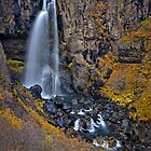Hundafoss, Iceland by Peter Hammer