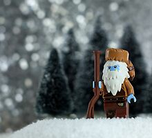Yeti Crockett - King of the Wild Frontier by emmkaycee