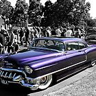 the colour purple by Steve Scully