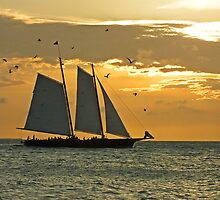 Key West Sailing by Ludwig Wagner