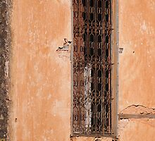 Mysterious old window by jhawa