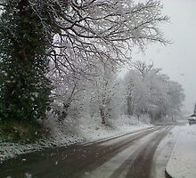 snow scene by demopalmer