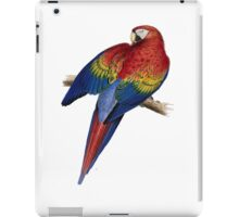 Illustration of A Scarlet Macaw Isolated On White iPad Case/Skin