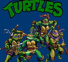 Teenage Mutant Ninja Turtles by Stewart Leach