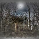 The House on Spook Hollow Hill by wiscbackroadz