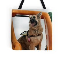 Looking for kids to slide with! Tote Bag