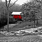 *The Red Covered Bridge* by DeeZ (D L Honeycutt)