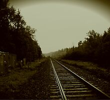 Tracks in Parry Sound by Jonny  McKinnon