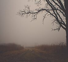 Tree in Fog by Maren Misner